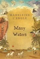 Cover image for Many waters