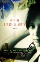 Cover image for Into the beautiful North : a novel