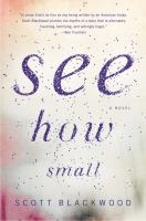 Cover image for See how small : a novel