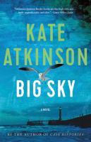 Cover image for Big sky : a novel