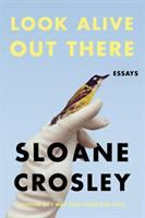 Cover image for Look alive out there : essays