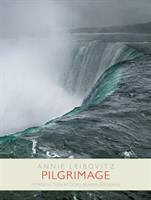 Cover image for Pilgrimage