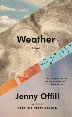 Cover image for Weather : a novel