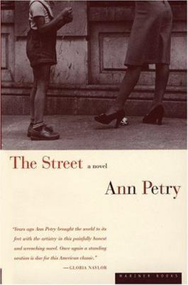 Cover image for The street : a novel