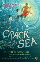 Cover image for A crack in the sea