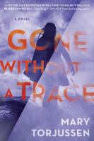 Cover image for Gone without a trace