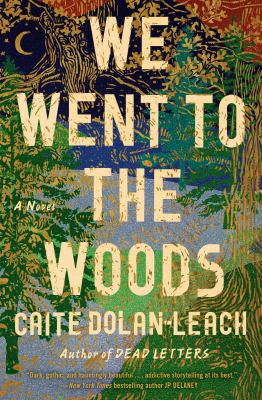 Cover image for We went to the woods : a novel