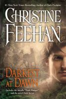 Cover image for Darkest at dawn : a Carpathian reunion
