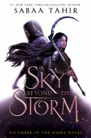 Cover image for A sky beyond the storm