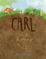 Cover image for Carl and the meaning of life