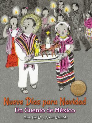 Cover image for Nueve días para Navidad : un cuento de México