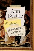 Cover image for A wonderful stroke of luck : a novel