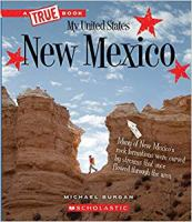 Cover image for New Mexico