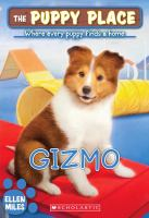 Cover image for Gizmo