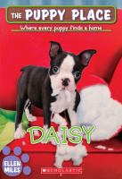 Cover image for Daisy