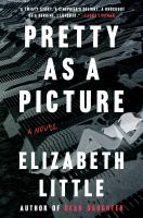 Cover image for Pretty as a picture : a novel