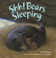 Cover image for Shh! bears sleeping