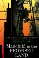 Cover image for Manchild in the promised land