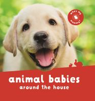 Cover image for Animal babies around the house.