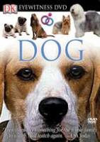 Cover image for Dog