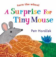 Cover image for A surprise for Tiny Mouse