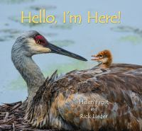 Cover image for Hello, I'm here!