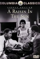 Cover image for A raisin in the sun