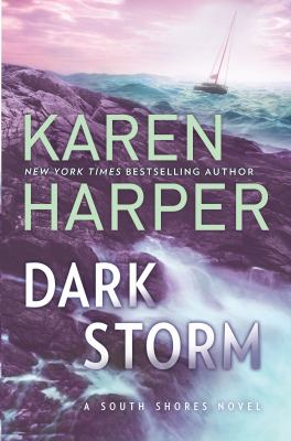 Cover image for Dark storm