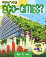 Cover image for What are eco-cities?