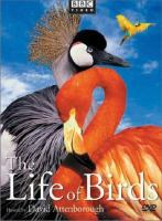 Cover image for The life of birds