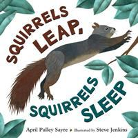 Cover image for Squirrels leap, squirrels sleep