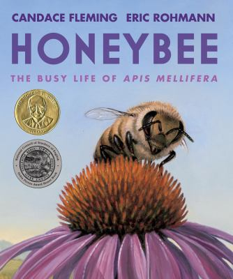 Cover image for Honeybee : the busy life of apis mellifera
