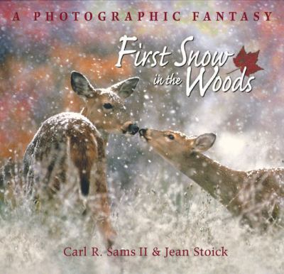 Cover image for First snow in the woods : a photographic fantasy