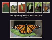 Cover image for The mystery of monarch metamorphosis
