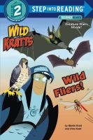 Cover image for Wild fliers!