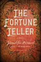 Cover image for The fortune teller : a novel