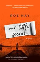 Cover image for Our little secret : a novel
