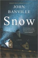 Cover image for Snow : a novel