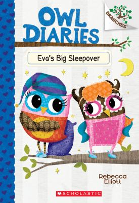 Cover image for Eva's big sleepover