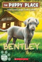 Cover image for Bentley