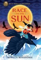 Cover image for Race to the sun
