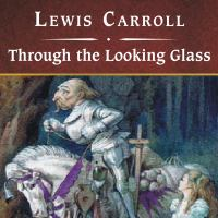 Cover image for Through the looking glass