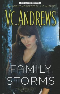 Cover image for Family storms