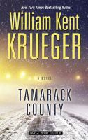 Cover image for Tamarack County
