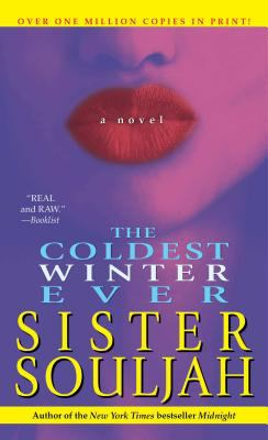 Cover image for The coldest winter ever : a novel