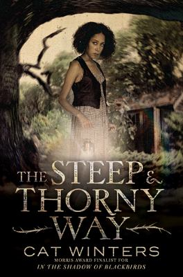 Cover image for The steep and thorny way