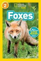 Cover image for Foxes