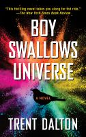 Cover image for Boy swallows universe