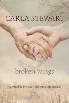 Cover image for Broken wings a novel