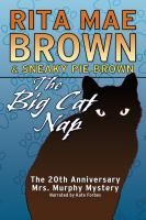 Cover image for The big cat nap